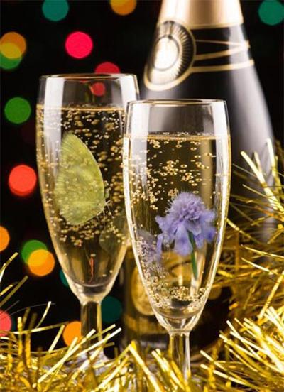 Chọn ly cho tiệc và cách uống rượu, Eva Sành điệu, chon ly uong ruou, chon ly, cach chon ly, uong ruou,