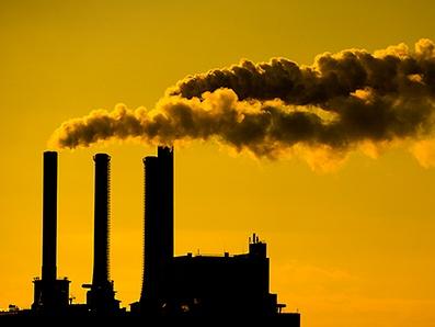 Tương lai thuộc về những lãnh đạo yêu môi trường